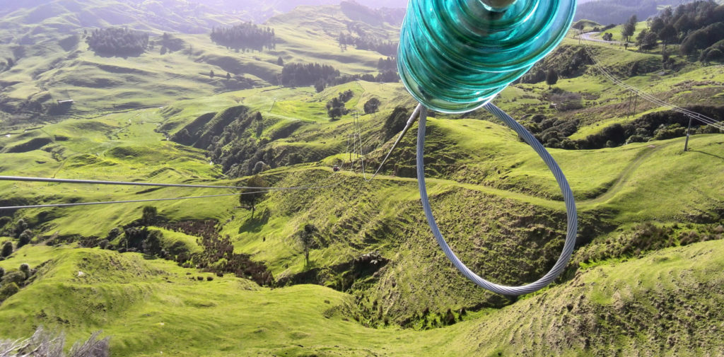 Some of TLC's 4,036 km of overhead lines spanning the King Country-Ruapehu region